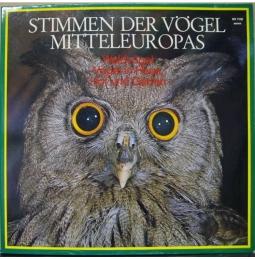 Stimmen der Vögel